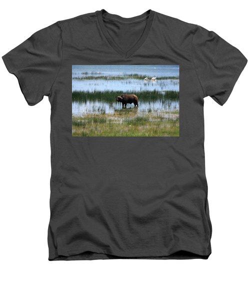 Water Buffalo At Lake Nakuru Men's V-Neck T-Shirt