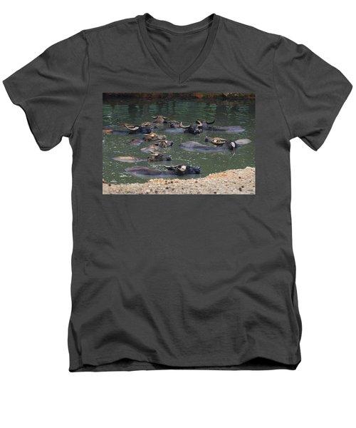 Water Buffalo Men's V-Neck T-Shirt by Chris Flees