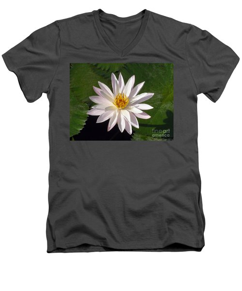 Men's V-Neck T-Shirt featuring the photograph Water Lily by Sergey Lukashin
