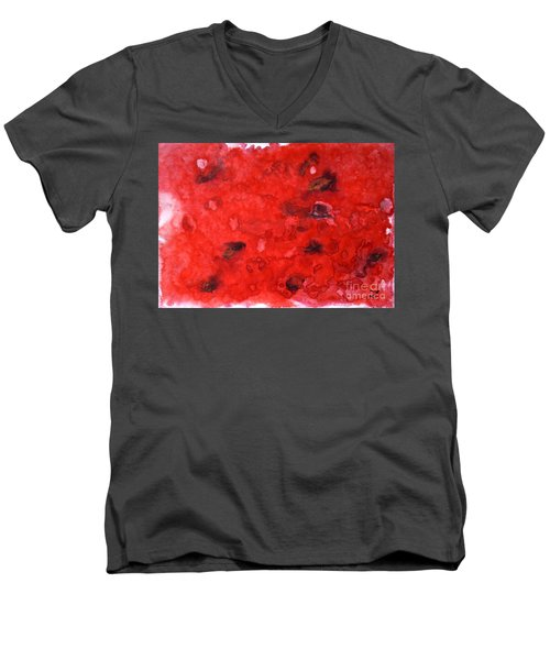 Watermelon  Men's V-Neck T-Shirt