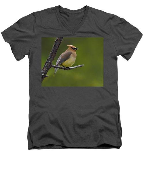 Wax On Men's V-Neck T-Shirt by Tony Beck
