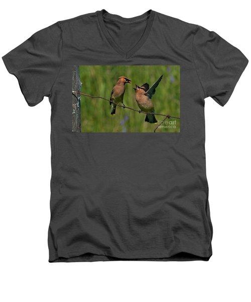 Waxwing Love.. Men's V-Neck T-Shirt