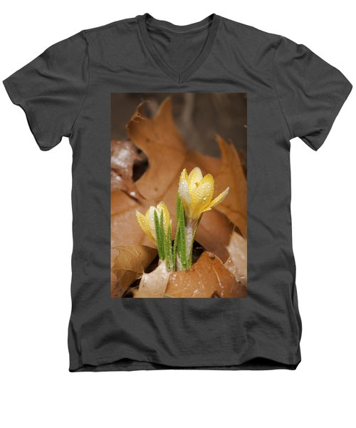 Welcome Spring Men's V-Neck T-Shirt