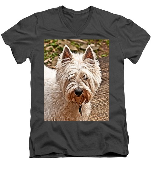Men's V-Neck T-Shirt featuring the photograph West Highland White Terrier by Robert L Jackson