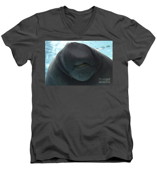 West Indian Manatee Smile Men's V-Neck T-Shirt