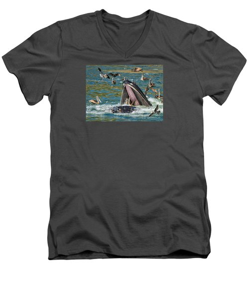 Whale Almost Eating A Pelican Men's V-Neck T-Shirt by Alice Cahill