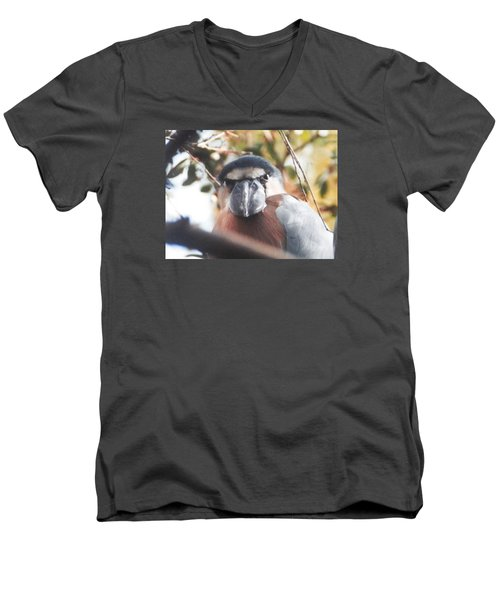 Men's V-Neck T-Shirt featuring the photograph Funny Bird Face by Belinda Lee