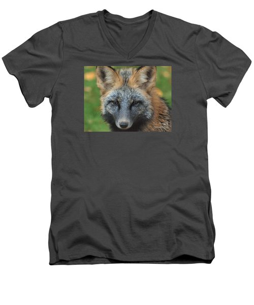 What The Fox Said Men's V-Neck T-Shirt