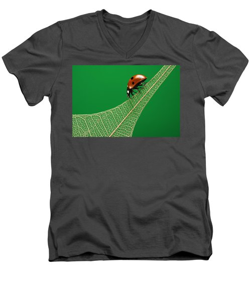 Where Have All The Green Leaves Gone? Men's V-Neck T-Shirt by William Lee