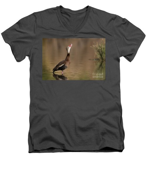 Whistling Duck Whistling Men's V-Neck T-Shirt by Bryan Keil