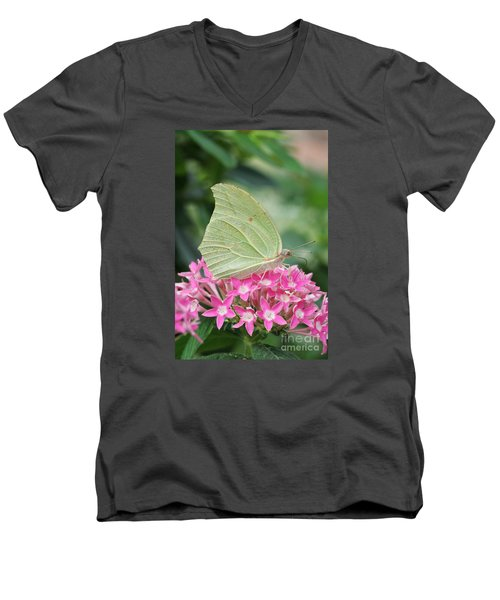 Men's V-Neck T-Shirt featuring the photograph White Angled Sulphur by Judy Whitton