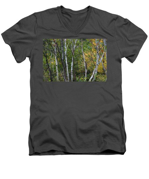 Men's V-Neck T-Shirt featuring the photograph White Birches In The Woods by Denyse Duhaime