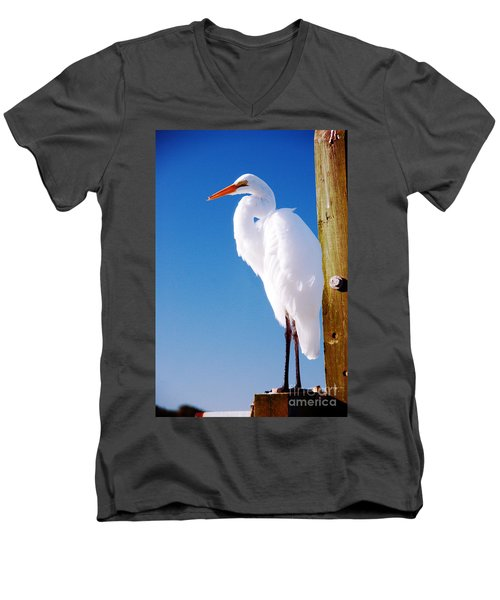 Great White Heron Men's V-Neck T-Shirt by Vizual Studio
