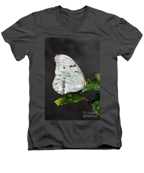 White Butterfly Men's V-Neck T-Shirt