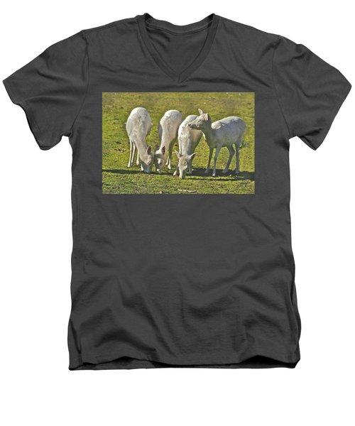 White Fallow Deer Mt Madonna County Park Men's V-Neck T-Shirt