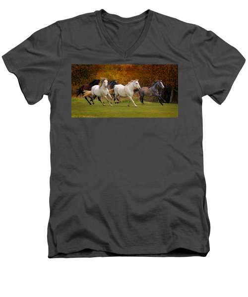White Horse Vale Lipizzans Men's V-Neck T-Shirt