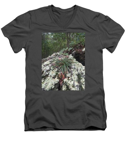 Men's V-Neck T-Shirt featuring the photograph White Lichen by Robert Nickologianis