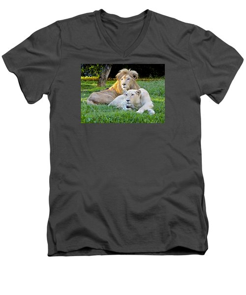 White Lion And Lioness Men's V-Neck T-Shirt by Venetia Featherstone-Witty