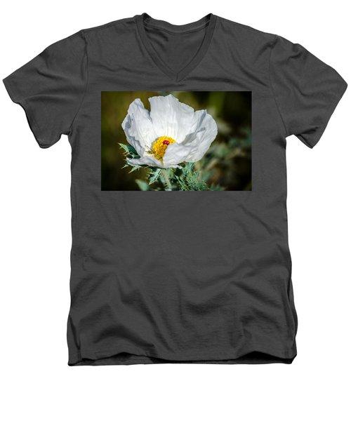 White Prickly Poppy Wildflower Men's V-Neck T-Shirt by Debra Martz
