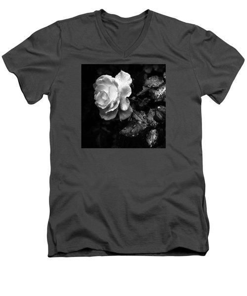 White Rose Full Bloom Men's V-Neck T-Shirt by Darryl Dalton