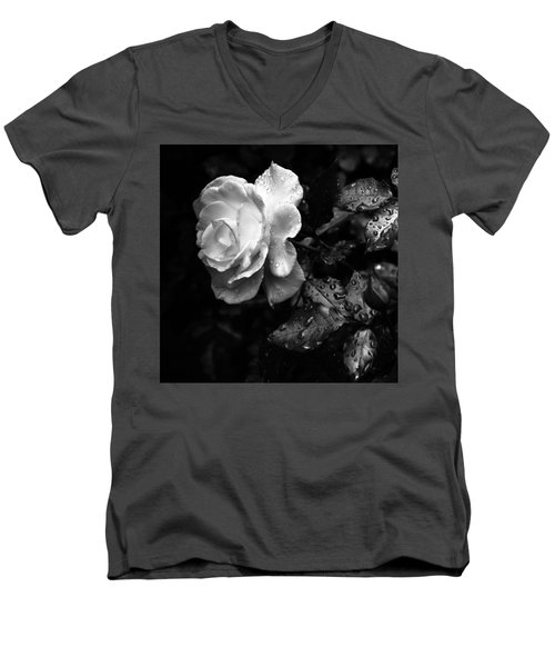 White Rose Full Bloom Men's V-Neck T-Shirt