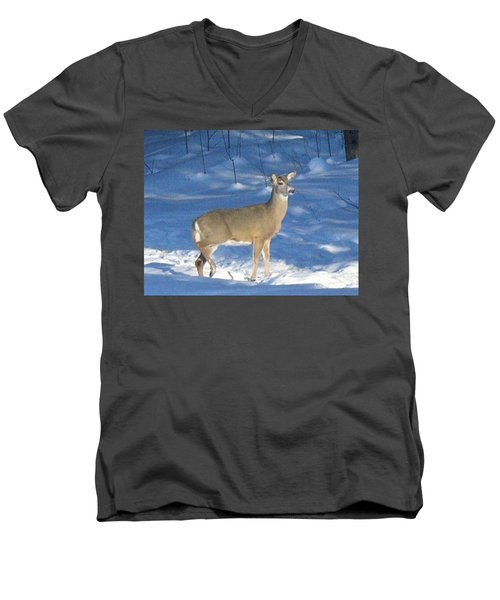 Men's V-Neck T-Shirt featuring the photograph White Tail Deer by Brenda Brown