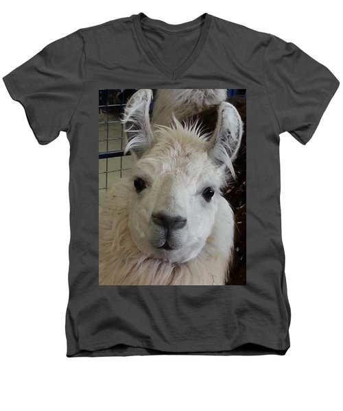 Men's V-Neck T-Shirt featuring the photograph Who Me Llama by Caryl J Bohn