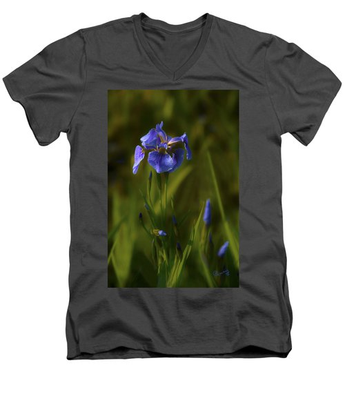 Wild Alaskan Iris Men's V-Neck T-Shirt