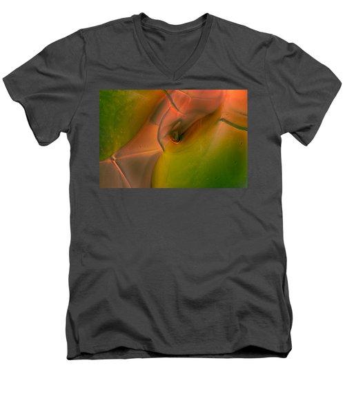 Wild Eyes Men's V-Neck T-Shirt