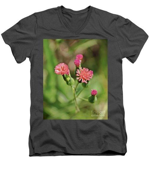 Men's V-Neck T-Shirt featuring the photograph Wild Flower by Olga Hamilton