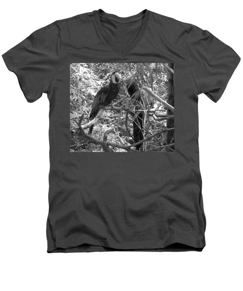Men's V-Neck T-Shirt featuring the photograph Wild Hawaiian Parrot Black And White by Joseph Baril