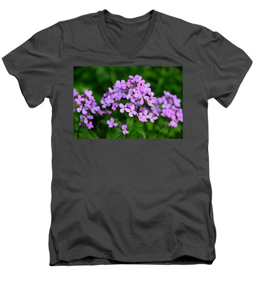 Wild Phlox Men's V-Neck T-Shirt by Debra Martz