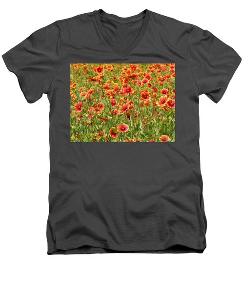 Men's V-Neck T-Shirt featuring the photograph Wild Red Daisies #1 by Robert ONeil