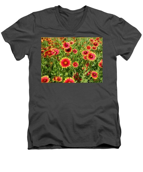 Men's V-Neck T-Shirt featuring the photograph Wild Red Daisies #4 by Robert ONeil