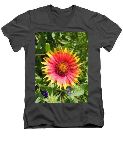 Men's V-Neck T-Shirt featuring the photograph Wild Red Daisy #3 by Robert ONeil