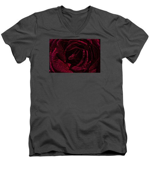 Wild Rose Men's V-Neck T-Shirt