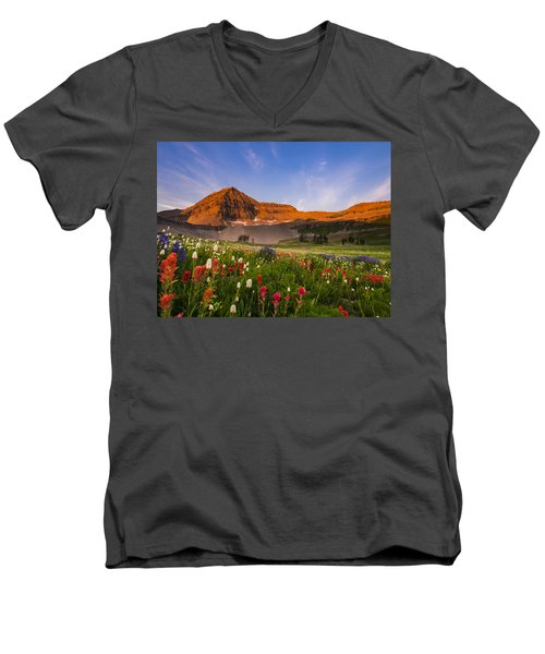 Wildflowers In Bloom Men's V-Neck T-Shirt