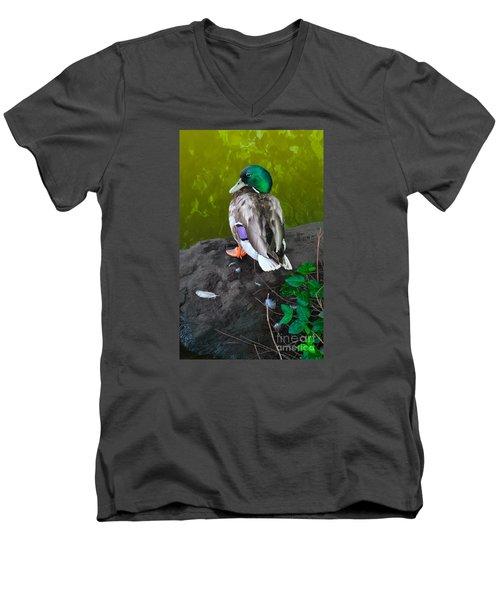 Wildlife In Central Park Men's V-Neck T-Shirt