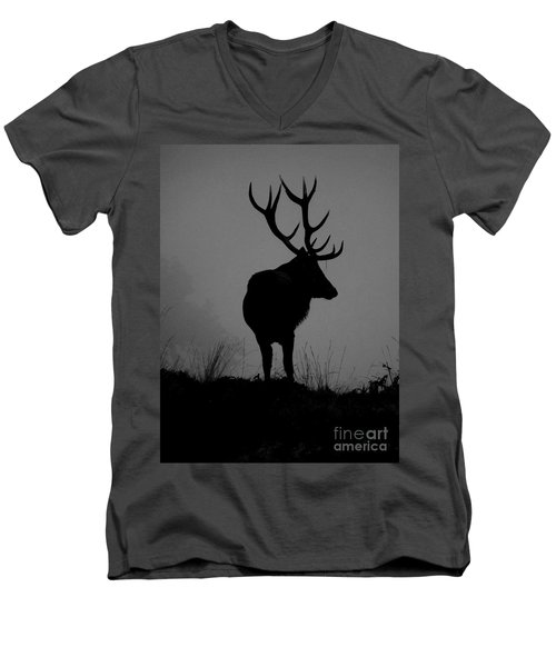 Wildlife Monarch Of The Park Men's V-Neck T-Shirt