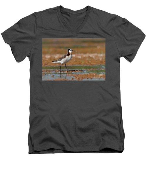 Wilson's Phalarope Calling Men's V-Neck T-Shirt by Bryan Keil
