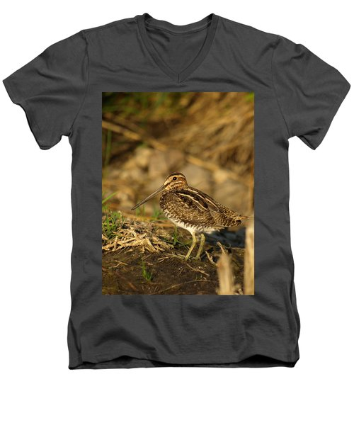Wilson's Snipe Men's V-Neck T-Shirt by James Peterson