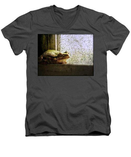 Windowsill Visitor Men's V-Neck T-Shirt
