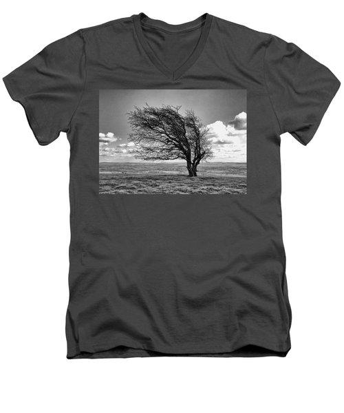 Windswept Tree On Knapp Hill Men's V-Neck T-Shirt