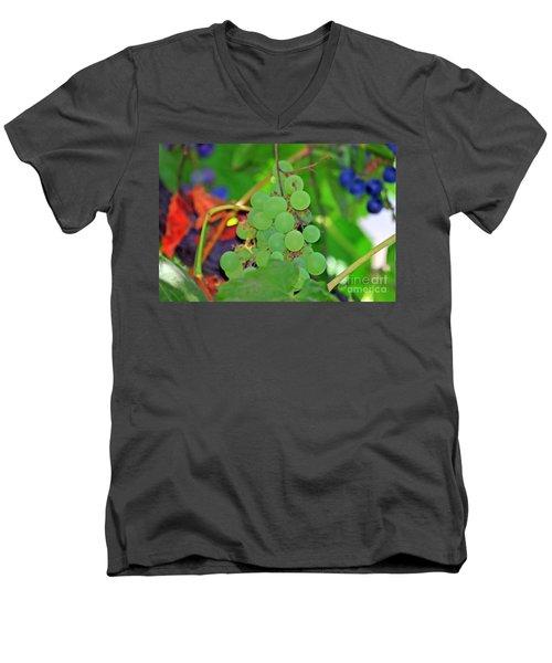 Wine Beginnings Men's V-Neck T-Shirt