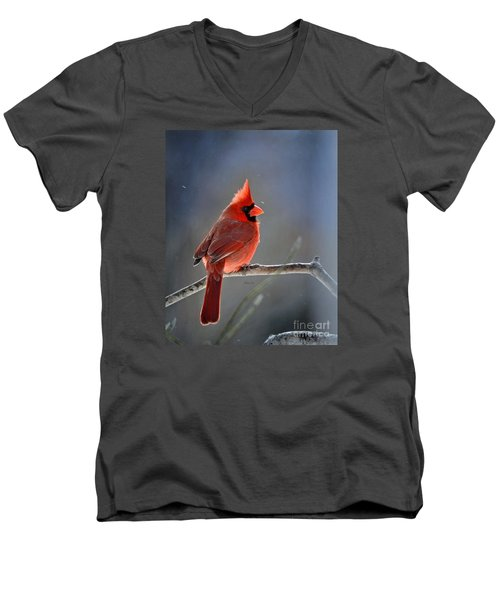 Winter Morning Cardinal Men's V-Neck T-Shirt