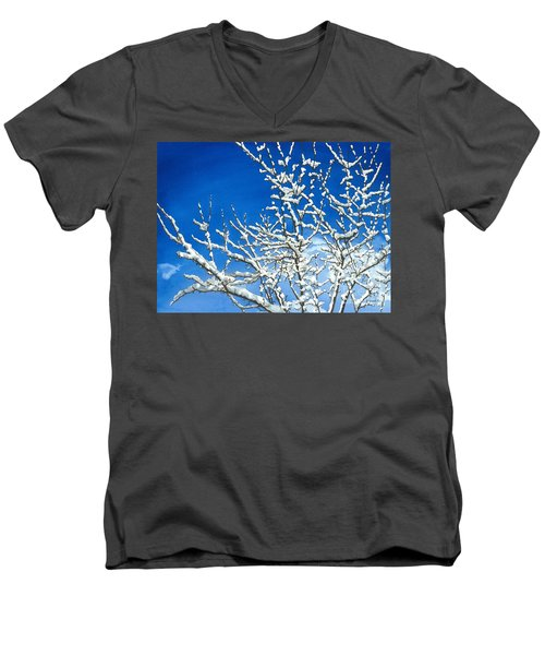 Winter's Artistry Men's V-Neck T-Shirt by Barbara Jewell