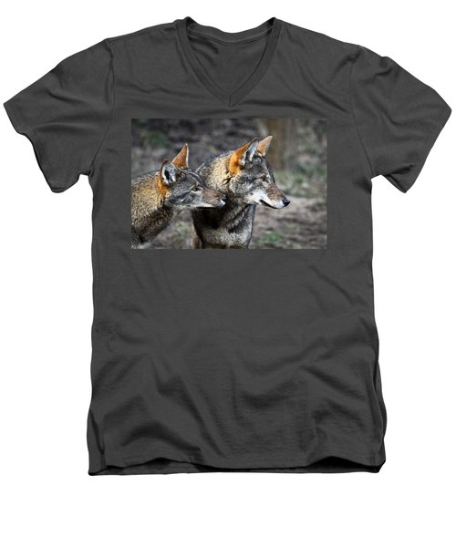 Wolf Alert Men's V-Neck T-Shirt by Steve McKinzie