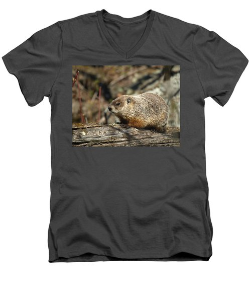 Men's V-Neck T-Shirt featuring the photograph Woodchuck by James Peterson