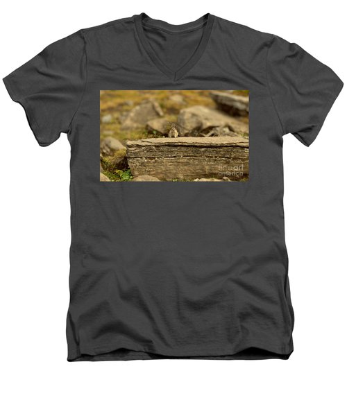 Woodland Critter Men's V-Neck T-Shirt