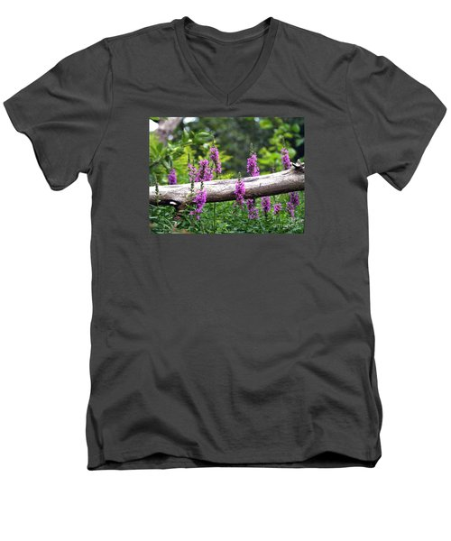 Men's V-Neck T-Shirt featuring the photograph Woodland Treasures by Susan  Dimitrakopoulos
